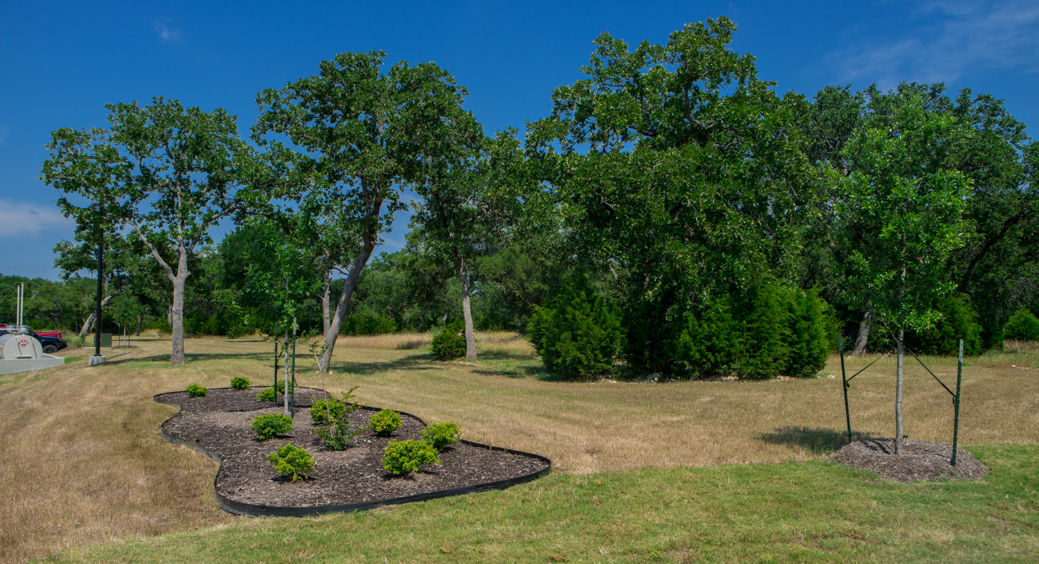 landscape with mulch