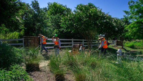 North By Northwest landscape maintenance crew