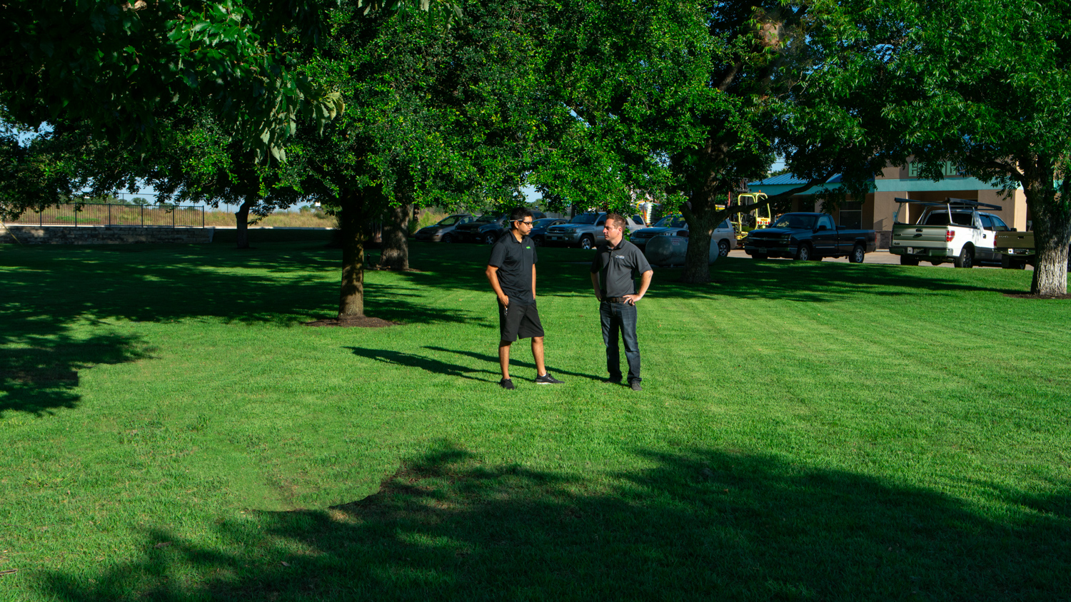 commercial-landscaping-Ewing-crew-grass-trees-3