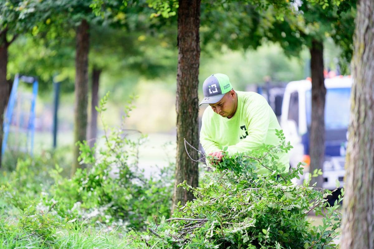 commercial landscape maintenance spring clean up prune in Austin tx