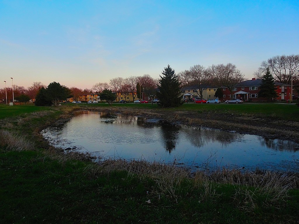 Retention Pond maintenance
