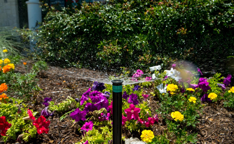 Sprinkler head in a landscape flower bed