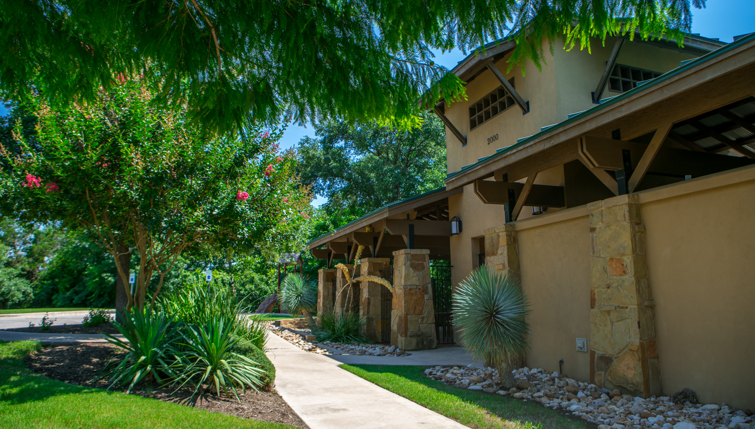 Commercial Landscape in Austin, TX maintained by North By Northwest